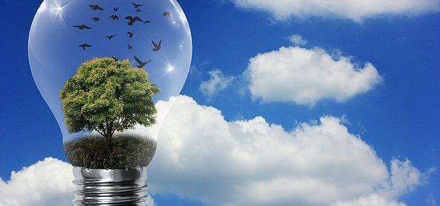 Immer mehr Mieter und Eigentümer nutzen energiesparende Beleuchtungslösungen