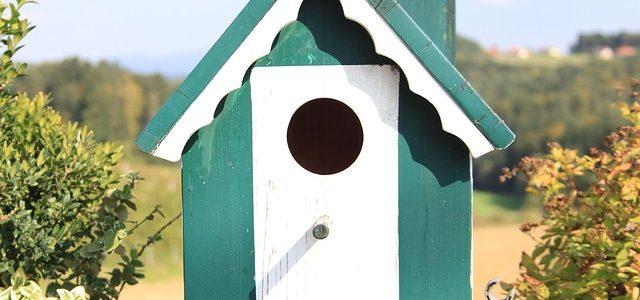 Wie eine neue Wohnung zum gemütlichen Nest wird…